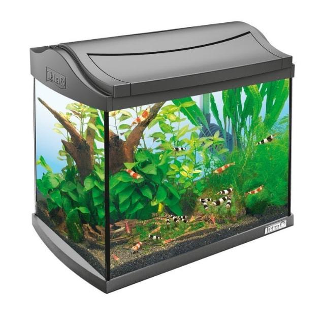 tetra aquaart led shrimp 20. Black Bedroom Furniture Sets. Home Design Ideas
